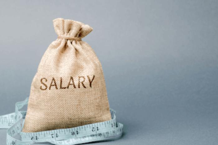 Cat trebuie platit un Project Manager?
